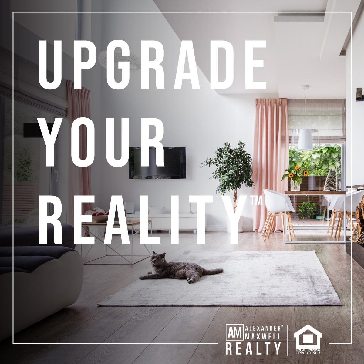 Alexander Maxwell Realty™ | Upgrade Your Reality™