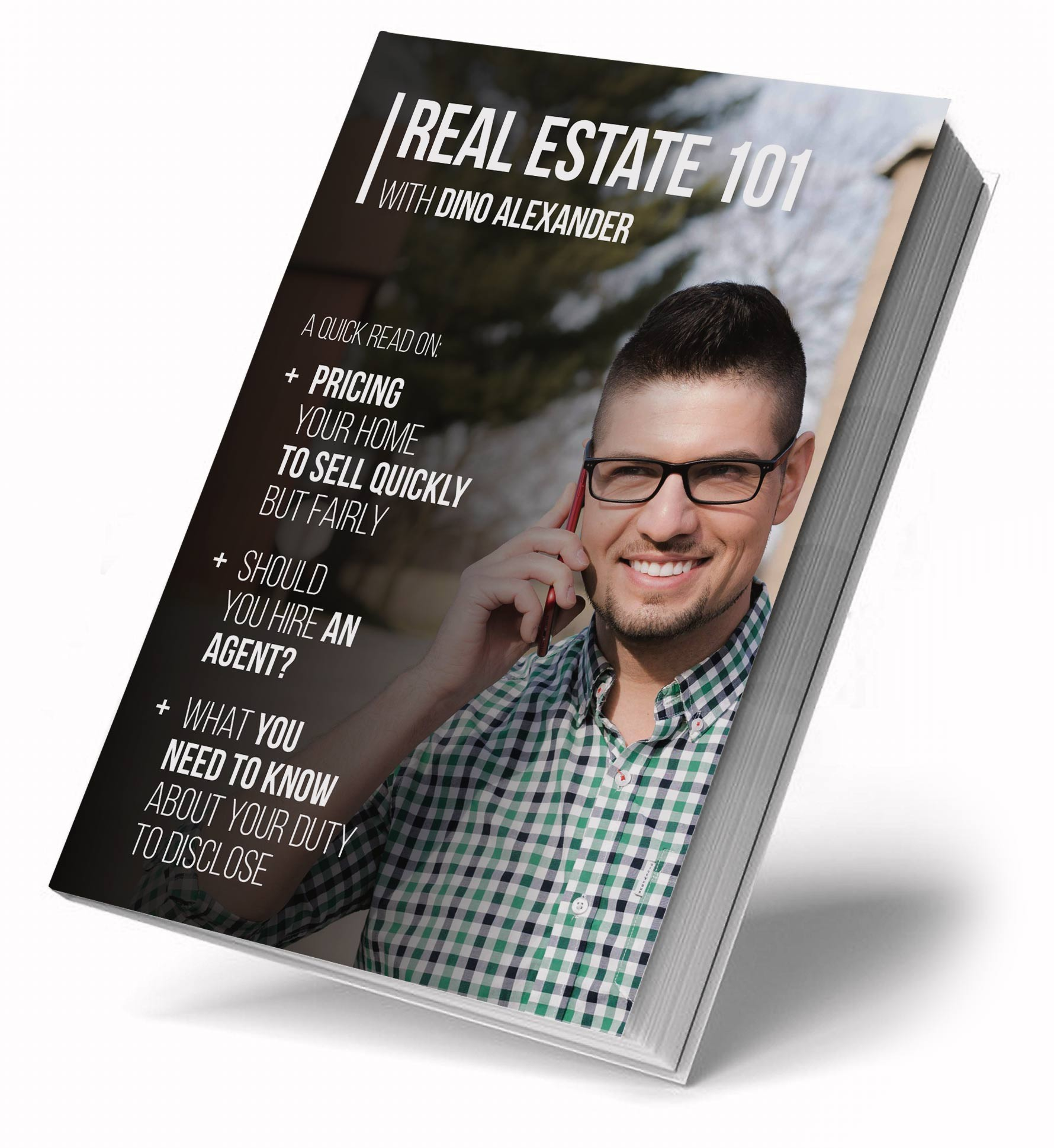 Real Estate 101 eBook by Dino Alexander